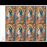 J Brandi Prayer Card - 775M