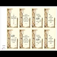 J Brandi Prayer Card - 509M
