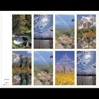 J Brandi Prayer Card - 609M